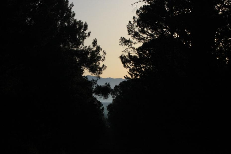 Park šuma Musapstan, Zadar