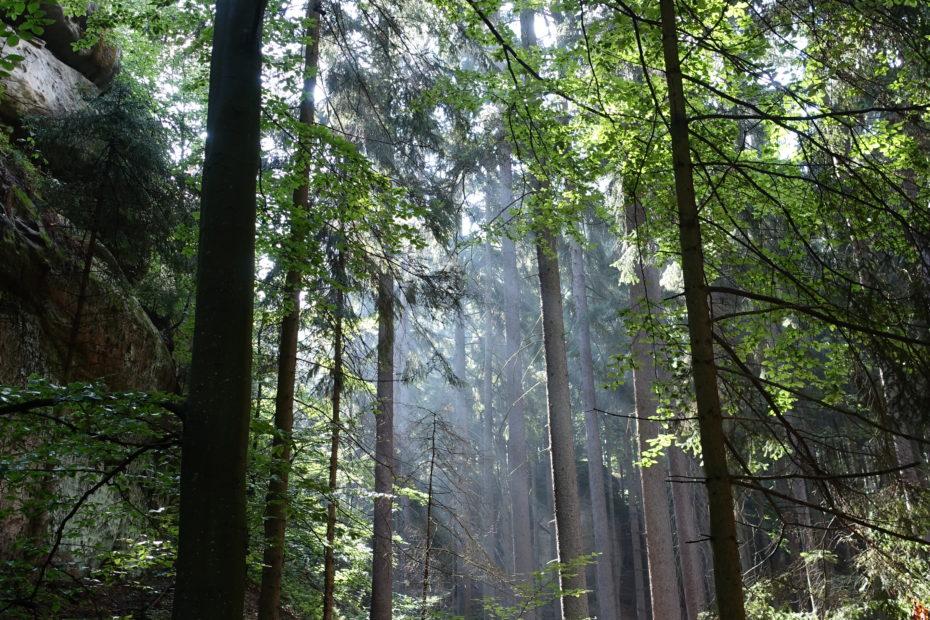 Böhmisches Paradies, Bohemian Paradies