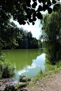 Podsemínský Rybník