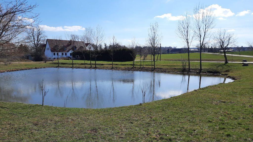Teich an der Wilden Sau