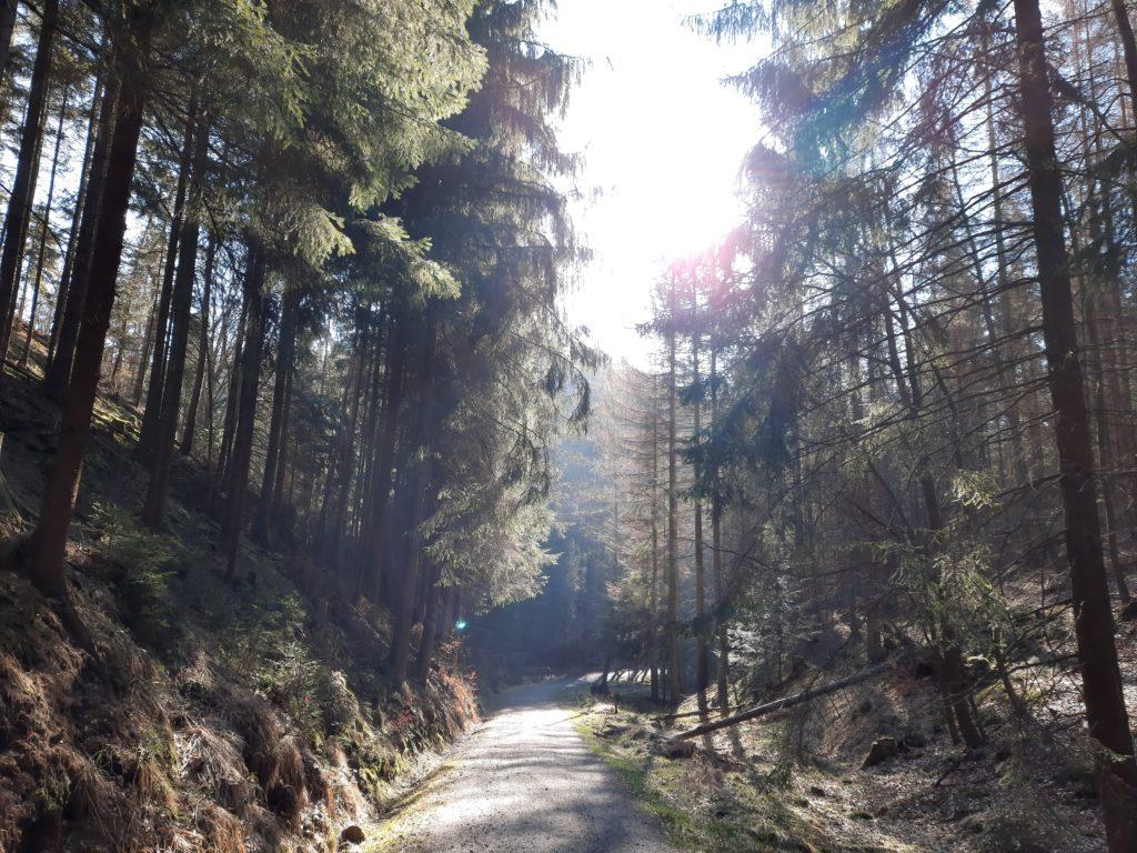 Sächsische Schweiz - Osterwochenende - Easter Weekend